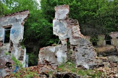 Opuszczona fabryka wina