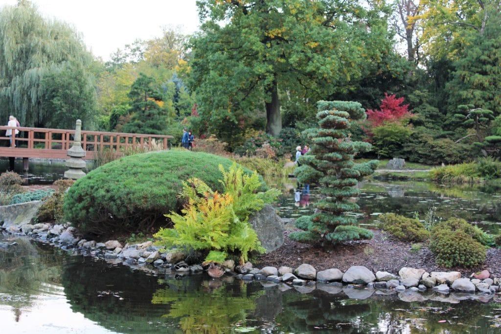 wrocław ogród japoński