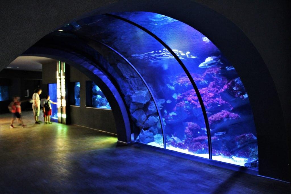 MEDIOLAN NA WEKEND oceanarium